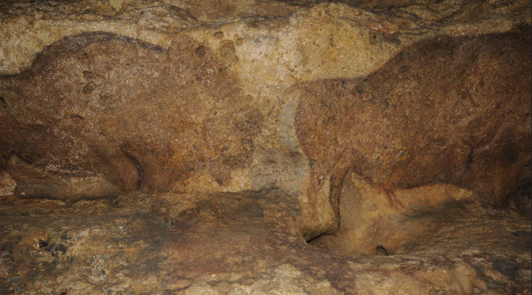 08 The cave of Font-de-Gaume
